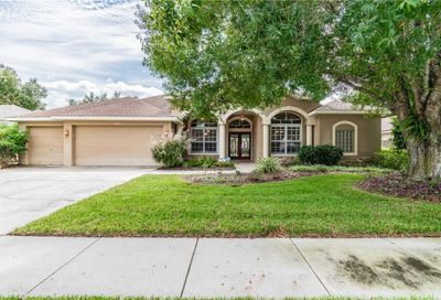 4526 Serenity Trail Palm Harbor FL 34685