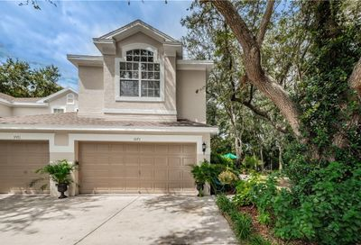 3573 Country Pointe Place Palm Harbor FL 34684
