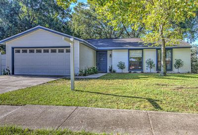 717 Herlong Court Brandon FL 33511