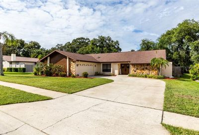 2803 Hamlin Place Palm Harbor FL 34684
