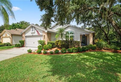 615 Deer Run N Palm Harbor FL 34684