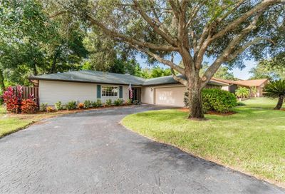 820 Lakeside Terrace Palm Harbor FL 34683