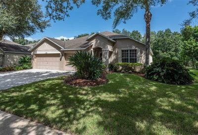 2808 Windcrest Oaks Court Valrico FL 33594