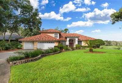 1806 Curry Road Lutz FL 33549