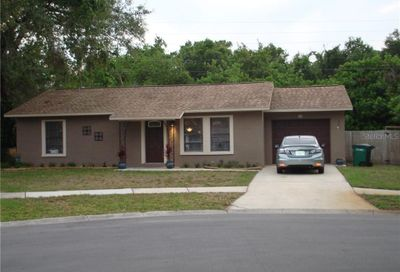 113 Meadowcross Drive Safety Harbor FL 34695