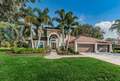 4119 Presidents Boulevard Palm Harbor FL 34685