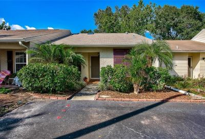 317 Plymouth Street Safety Harbor FL 34695
