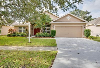 5919 Tealwater Place Lithia FL 33547