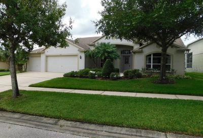 6107 Heroncrest Court Lithia FL 33547