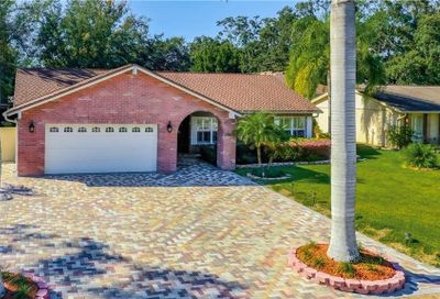 11418 Country Oaks Drive Tampa FL 33618