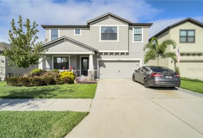 12279 Creek Preserve Drive Riverview FL 33579