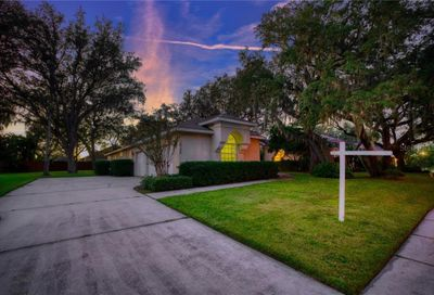 10136 Paddock Oaks Drive Riverview FL 33569