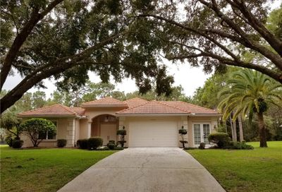 9443 Bearwalk Path Weeki Wachee FL 34613