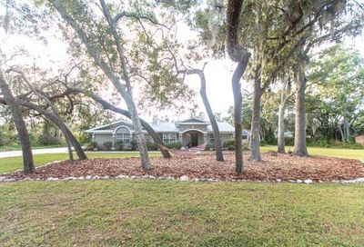 6874 County Road 95 Palm Harbor FL 34684