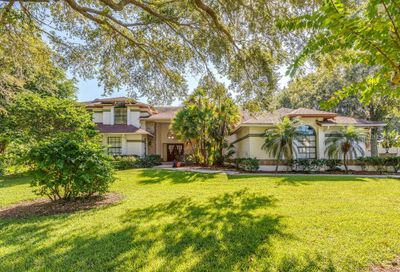 3224 Harvest Moon Drive Palm Harbor FL 34683