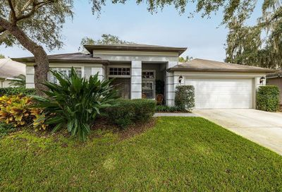 6116 Whimbrelwood Dr Lithia FL 33547