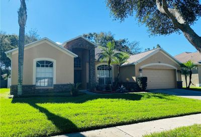 834 Innergary Place Valrico FL 33594