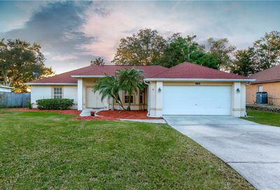11201 Autumn Wind Loop Clermont FL 34711