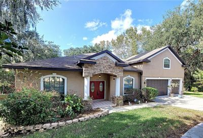 8849 Alafia Cove Drive Riverview FL 33569