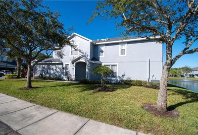 10301 Willow Leaf Trail Tampa FL 33625