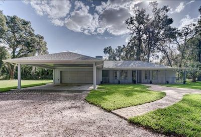 501 E Brentridge Drive Brandon FL 33511