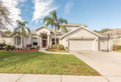 4306 Swift Circle Valrico FL 33596