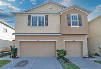 4924 White Sanderling Court Tampa FL 33619