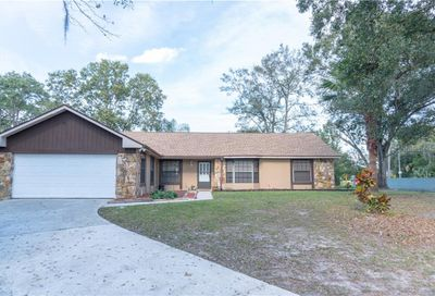 10006 Albyar Avenue Riverview FL 33578