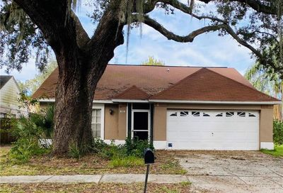 1012 Pleasant Pine Court Valrico FL 33596