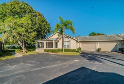 1207 Golfview Woods Drive Ruskin FL 33573