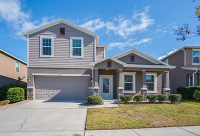 372 Red Kite Drive Groveland FL 34736