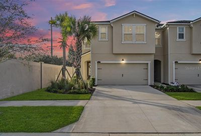 11733 Weathered Felling Drive Riverview FL 33569