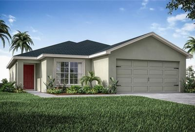 119 Blue Alice Springs Court Ruskin FL 33570