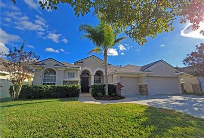 12822 Castlemaine Drive Tampa FL 33626