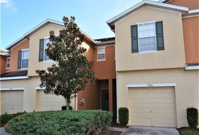 5016 White Sanderling Court Tampa FL 33619
