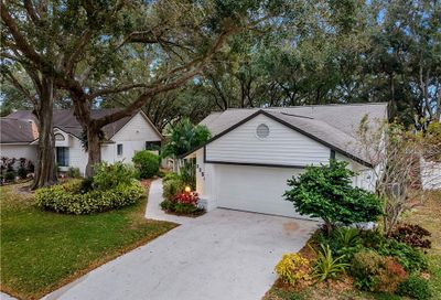 3254 Pine Forest Drive Palm Harbor FL 34684