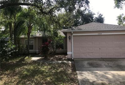 11519 Wellman Drive Riverview FL 33578