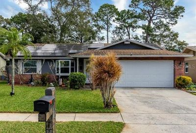 2029 Whitney Drive Clearwater FL 33760
