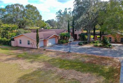 329 E County Line Road Lutz FL 33549