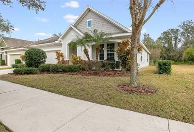 15816 Starling Water Drive Lithia FL 33547