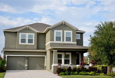 5013 Weeping Holly Court Winter Garden FL 34787