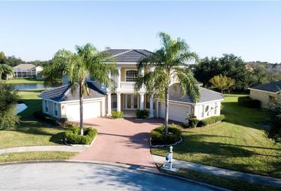 19133 Harborbridge Lane Lutz FL 33558