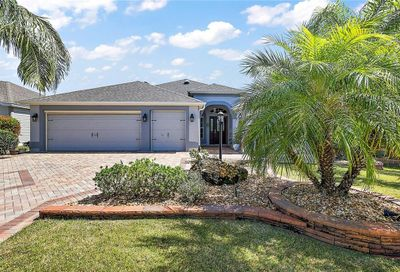 3227 Kilarny Place The Villages FL 32163