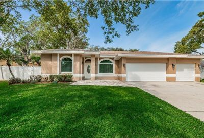 4448 Glenbrook Drive Palm Harbor FL 34683