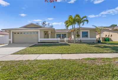204 Meadowcross Drive Safety Harbor FL 34695