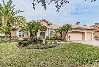 10720 Beagle Run Place Tampa FL 33626