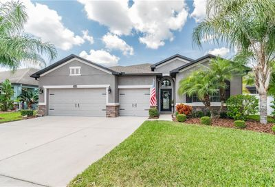 3849 Buckinghamshire Drive Land O Lakes FL 34638