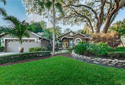 1705 Country Trails Drive Safety Harbor FL 34695
