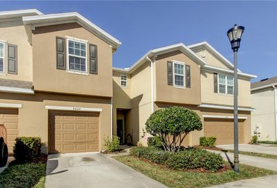 8829 Turnstone Haven Place Tampa FL 33619