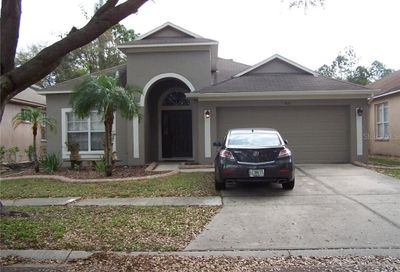 8111 Moccasin Trail Drive Riverview FL 33578